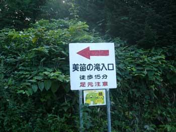 Bifue_01