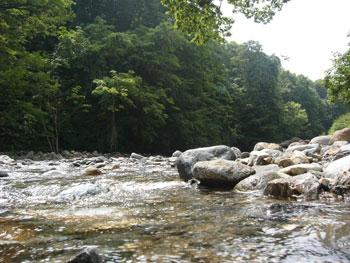 Jukai_river