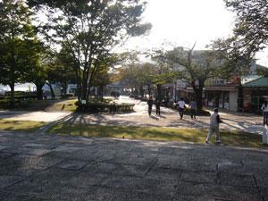 Sagamiko_6